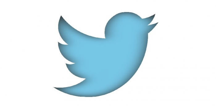 Obtenir i gestionar informació a Twitter